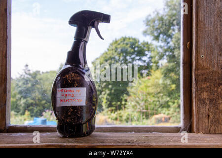 An old plastic spray bottle stands on the window ledge of a garden shed, with handwritten label 'Washing up liquid insecticide' stuck on it side - Stock Photo