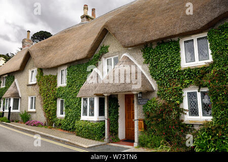 Seacliffe Warren thatched roof Cornish cottage with ivy in St Mawes village Truro Cornwall England - Stock Photo