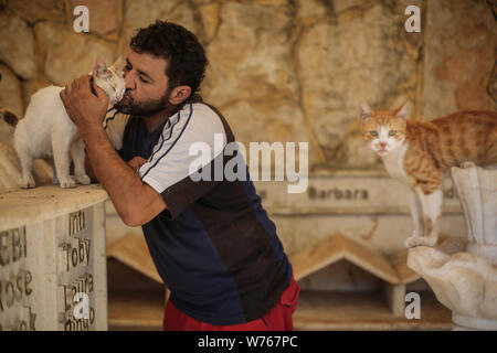 03 August 2019, Syria, Aleppo: Mohammed Alaa al-Jaleel, also known as 'the cat man of Aleppo' pets a cat at the Ernesto's Cat Sanctuary that he runs in Kafr Naya. During the Syrian war in 2012, Al-Jaleel was working as an ambulance driver in Aleppo, he used to drop off food for stray and abandoned cats on his way home after work. In 2015, he started to search for living cats in the war devastated areas and take them home, later in the year his compassionate work with cats gone viral and with the help of an Italian cat lover called Alessandra Abidin, he started to raise funds and receive donati - Stock Photo