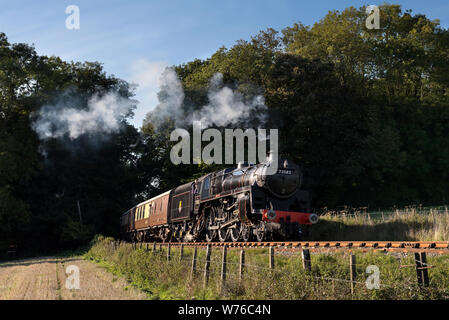 BR Standard 5MT No.73082 Works a train through Leigh woods on the WSR - Stock Photo