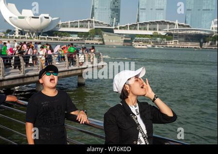 01.08.2019, Singapore, Republic of Singapore, Asia - Tourists pose for photos at Merlion Park along the Singapore River. - Stock Photo
