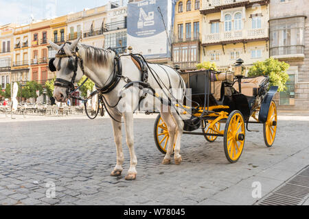 A tourist horse and carriage in the street in Seville Spain, ready to take tourists on a horse drawn carriage trip round the city. - Stock Photo