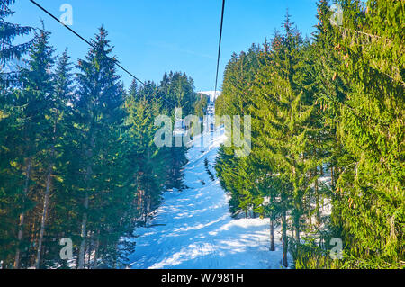Nice cable car journey with a view on Zwieselalm mountain slope, coniferous forest and perfect ski pistes, Gosau, Salzkammergut, Austria