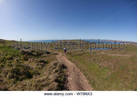 Point Reyes, United States - March 03, 2012 : Hiking paths all around through this vast grass land - Stock Photo