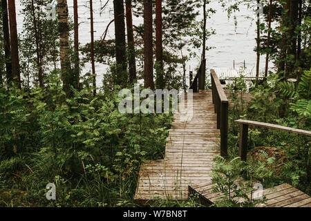 Wooden staircase leading to the river in a pine Scandinavian forest - Stock Photo