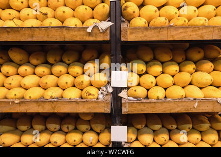 Pile of fresh yellow ripped Thai mango names Mamuang Kaew displayed on fruits stall shop - Stock Photo