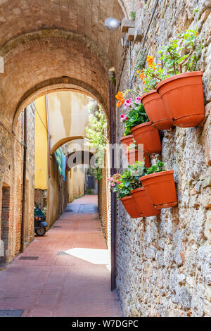 Flower pots hanging on a wall in a alley - Stock Photo