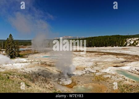 geyser in the Norros Basin in the Yellowstone National Park