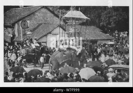 'Kandy Perahera. - A Procession of Elephants carried through by the Kandyan Chiefs', c1890, (1910). Artist: Alfred William Amandus Plate. - Stock Photo