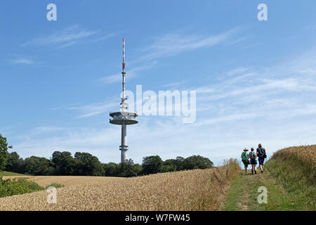 hiking tour to Bungsberg near Schönwalde, Schleswig-Holstein, Germany - Stock Photo