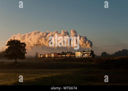 61306 at burrs at Sunrise - Stock Photo