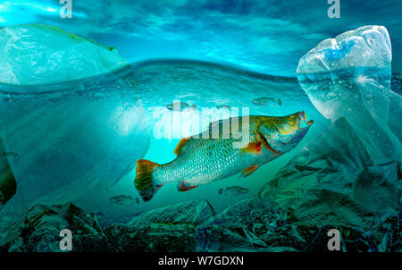 Plastic pollution in marine environmental problems Animals in the sea cannot live. And cause plastic pollution in the ocean (Environmental concept)