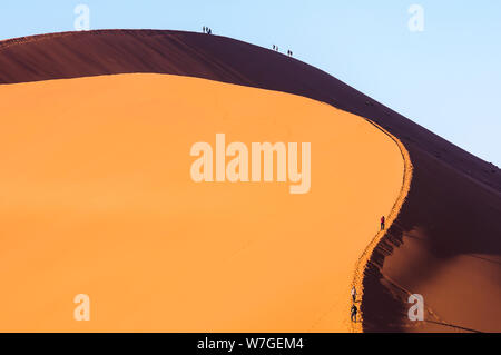 Dune 45, a 170m high dune made from red sand, Sossusvlei, Namib-Naukluft National Park, Namibia - Stock Photo