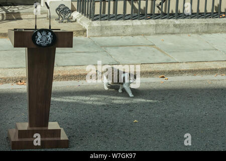 Larry the Downing Street Cat, Chief Mouser to No 10, walks past a lectern, speaker's podium outside the entrance - Stock Photo