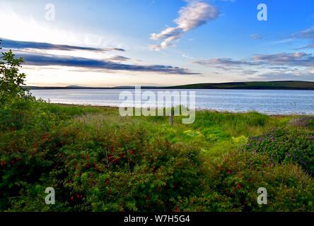 The Ruff and Water Sound, St. Margaret's Hope. - Stock Photo