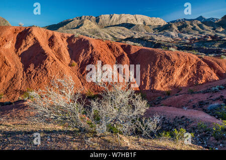 Dry creosote bush, rock formations, unnamed hills, view from Northshore Road, Lake Mead National Recreation Area, Nevada, USA - Stock Photo
