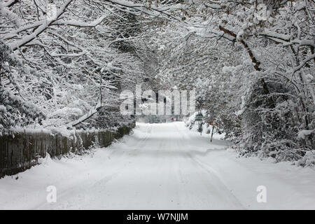 Heavy early snow on rural road, Black Heath, Surrey, UK - Stock Photo