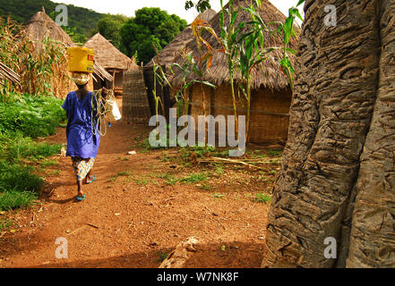 Bassari village huts and woman carrying bucket on her head.  Bassari country, east Senegal. This area became a UNESCO World Heritage site in 2012, for cultural landscape and traditions kept by the the Bassari, Fula and Bedik peoples. September 2006 - Stock Photo