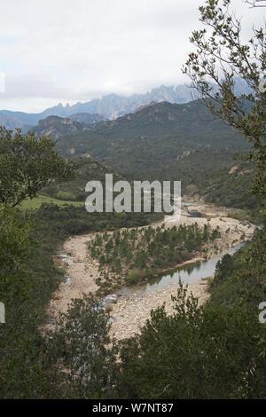 View of the Solenzara river, Parc Naturel Regional de Corse, Corsica, France, April 2010. - Stock Photo