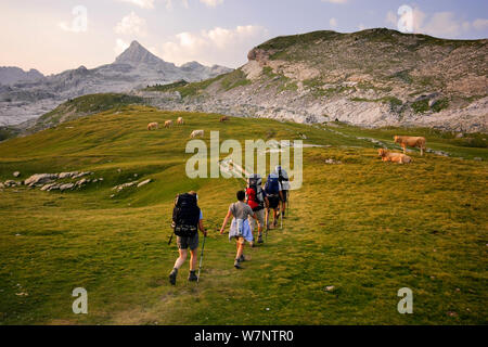 People Hiking at sunrise on the trail to Anie peak (2507 m) in Belagua valley, Pyrenees, Navarra, Spain - Stock Photo