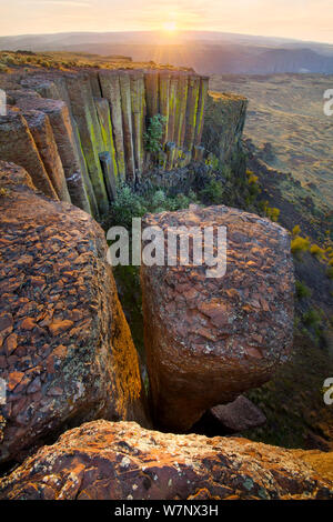 A lichen covered wall of eroded basalt columns along the side Potholes Coulee near Ancient Lakes region, Washington, USA, April - Stock Photo
