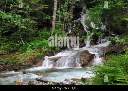 Waterfall near the Pont d'Espagne in the Hautes-Pyrenees near Cauterets, Pyrenees, France, June 2012 - Stock Photo