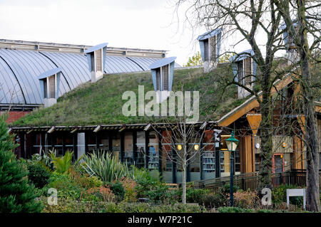 Green roof on The Centre for Understanding the Environment (CUE) an eco building with cowls on the roof which incorporate a passive ventilation system. The Horniman Museum, London, UK - Stock Photo