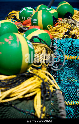 West coast rock lobster (Jasus lalandii) fishing aboard the James Archer (Oceana Fisheries). Brightly coloured buoys used to mark trap locations. Saldanha Bay and St. Helena Bay, Western Cape, South Africa - Stock Photo