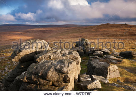 High Willhays, the highest summit in Southern Britain, viewed from Yes Tor, Dartmoor National Park, Devon, England. April 2012. - Stock Photo