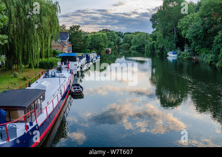 Boats moored alongside the edge of The River Thames at Pangbourne  in West Berkshire, UK - Stock Photo