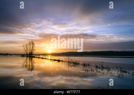 Sunrise reflected in vast expanse of flood water lying over the fields at King's Sedge Moor, near Othery, Somerset Levels, Somerset, UK. January 2014 - Stock Photo