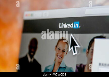 --FILE--A netizen browses the Chinese website of professional social networking site LinkedIn in Guangzhou, south China's Guangdong province, 14 June - Stock Photo