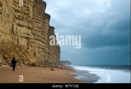 A cliff fall of Bridport sandstone, West Bay, Bridport, Dorset, UK, August 2012. - Stock Photo
