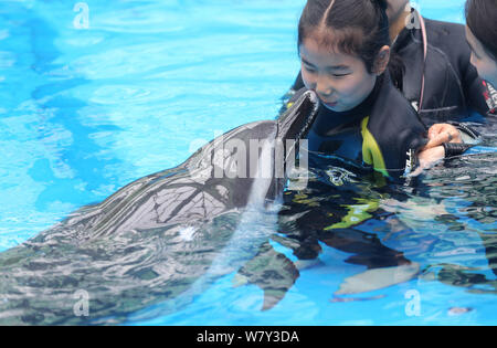 Chinese autistic girl Chenchen interacts with a dolphin under the help of trainers at Chengdu Haichang Polar Ocean Park in Chengdu city, southwest Chi - Stock Photo