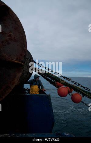 Fisherman hauling dragger net back onto fishing trawler. Stellwagen Bank, New England, United States, North Atlantic Ocean, December 2011. Model released.