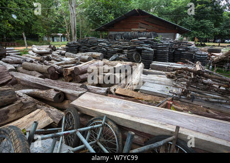 Siam rosewood tree (Dalbergia cochinchinensis) timber and motorcycle wheels, confiscated from poachers, stored as evidence, Thap Lan National Park, Dong Phayayen-Khao Yai Forest Complex, eastern Thailand, August. - Stock Photo