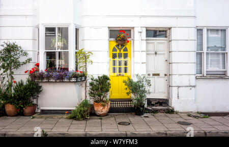 Bright yellow wooden front door surrounded by pots and planters against white brick wall, Over Street, Brighton East Sussex - Stock Photo