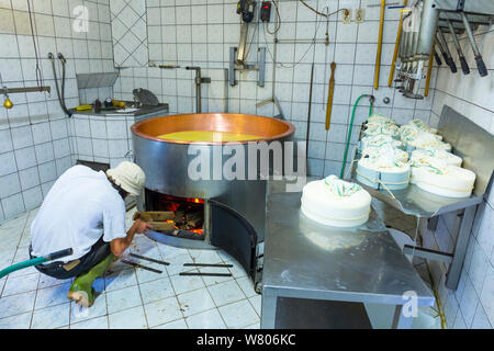 Man working on organic cheese farm, Cadrg, Julian Alps, Tolmin, Slovenia, October 2014. - Stock Photo