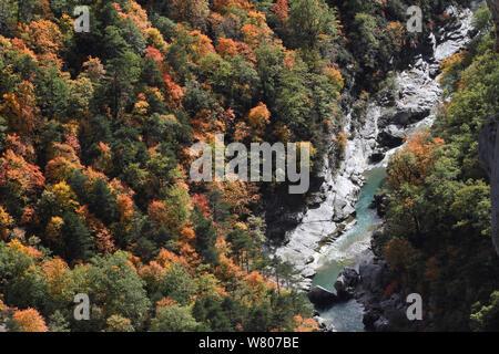 River running through the Verdon Gorge / Gorges du Verdon in autumn, Verdon Natural Regional Park, Alpes de Haute Provence, Provence, France, October - Stock Photo