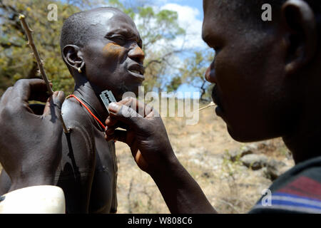 Men from the Mursi tribe decoratively scaring skin, one man scars the arm of another one by lifting the skin with an acacia spine and cutting it with a razor blade, Ethiopia, March 2015. - Stock Photo