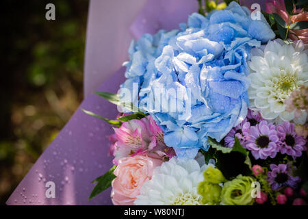 beautiful blossoming flower bouquet of fresh hydrangea, roses, eustoma, mattiola, flowers in blue, pink and white colors. rich bouquet with blue - Stock Photo