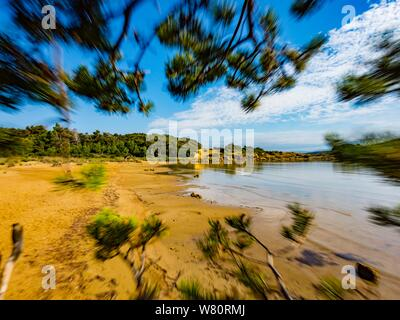 Sandy beach vacated vacant countryside speeding blurry through tree pine branches branch - Stock Photo