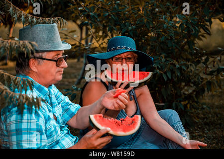 Happy senior loving couple eating watermelon and having a great time together on a picnic in the park. - Stock Photo