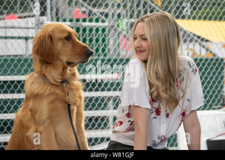 RELEASE DATE: August 9, 2019 TITLE: The Art of Racing in The Rain STUDIO: Twentieth Century Fox DIRECTOR: Simon Curtis PLOT: A dog named Enzo recalls the life lessons he has learned from his race car driving owner, Denny. STARRING: AMANDA SEYFRIED as Eve, and Enzo. (Credit Image: © Twentieth Century Fox/Entertainment Pictures) - Stock Photo