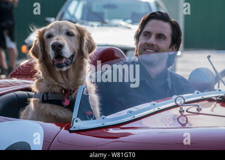 RELEASE DATE: August 9, 2019 TITLE: The Art of Racing in The Rain STUDIO: Twentieth Century Fox DIRECTOR: Simon Curtis PLOT: A dog named Enzo recalls the life lessons he has learned from his race car driving owner, Denny. STARRING: MILO VENTIMIGLIA as Denny Swift, and Enzo. (Credit Image: © Twentieth Century Fox/Entertainment Pictures) - Stock Photo