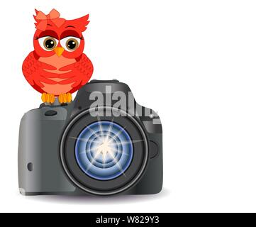 Owl sits on the button Start realistic, modern camera, isolated on white background with copy space - Stock Photo