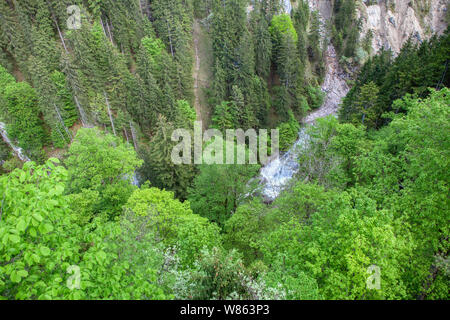 mountain river aerial view of green tree tops - Stock Photo