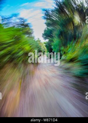 Green forest countryside path pathway speeding through dense trees dizzy circular twirl motion - Stock Photo
