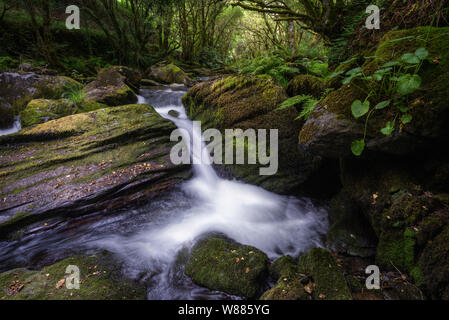 Waterfall and pools between mossy rocks and lush vegetation, in the atlanticode galicia humid forests - Stock Photo