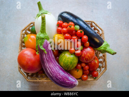 A basket full of fresh ripe organic vegetables - white and purple aubergines, orange tomatoes, cherry tomatoes, and red tomatoes